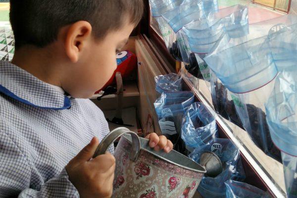 DIARIO DE NUESTRA SEMANA DE LA CIENCIA EN EDUCACIÓN INFANTIL